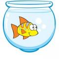 aquario.cdr